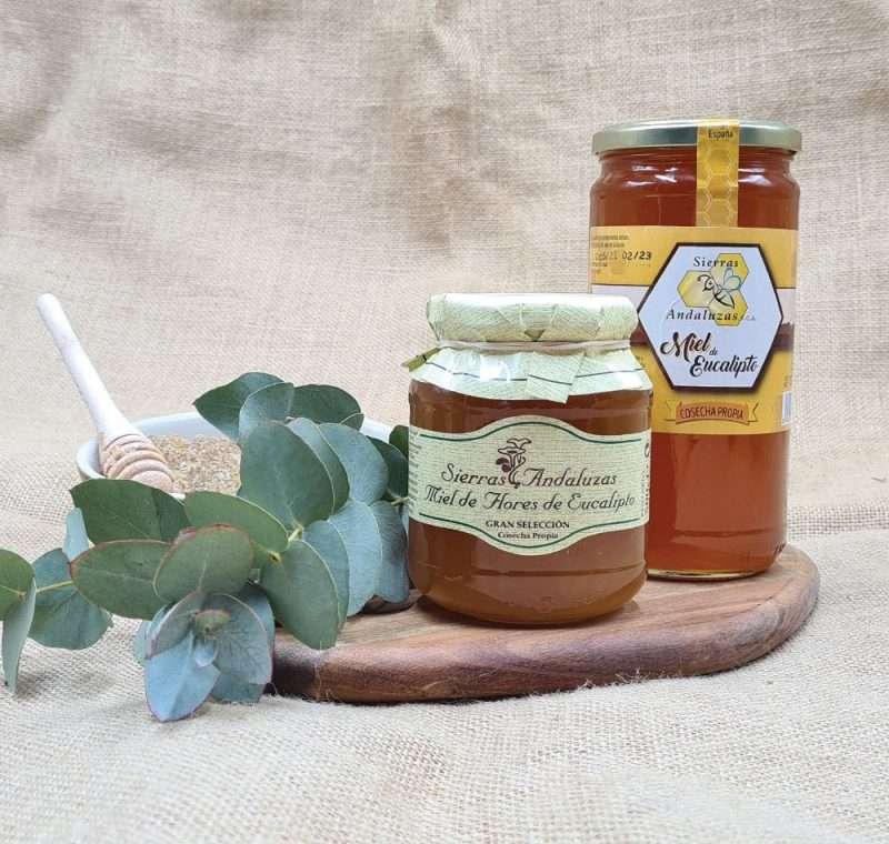 Miel de Eucalipto hecha en España. Miel cruda de eucalipto de Sierras Andaluzas. Compra Online en nuestra tienda.