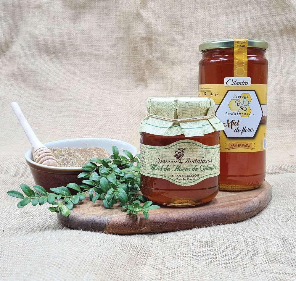 Miel de Cilantro hecha en España. Miel cruda de cilantro de Sierras Andaluzas. Compra Online en nuestra tienda.