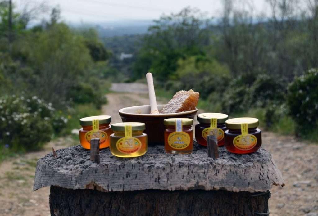 Compra oNline miel cruda de Andalucía. Miel artesanal de Sierras Andaluzas.